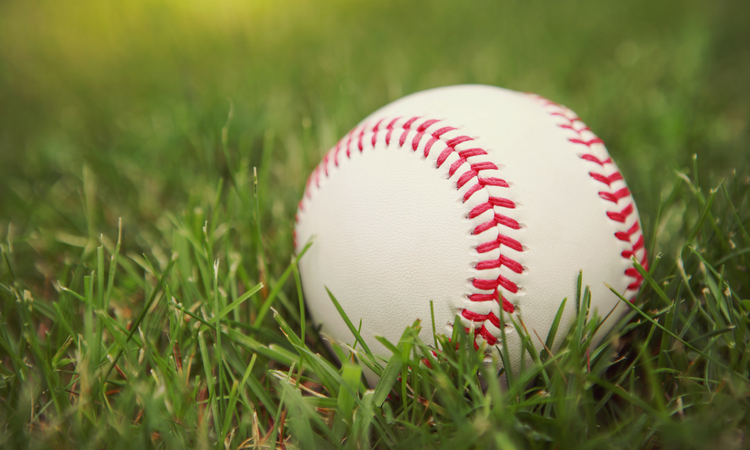 Close-up of a baseball with bright red threads laying in green grass.